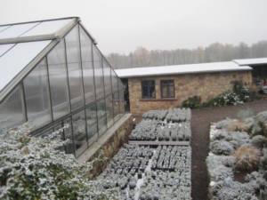 2017_Kräutergarten_Winterimpressionen23_Lavendelpfalnzen